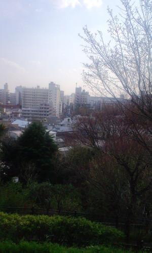 Saigoyama0