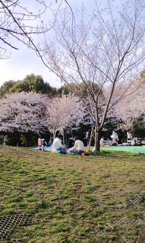 Saigoyama2