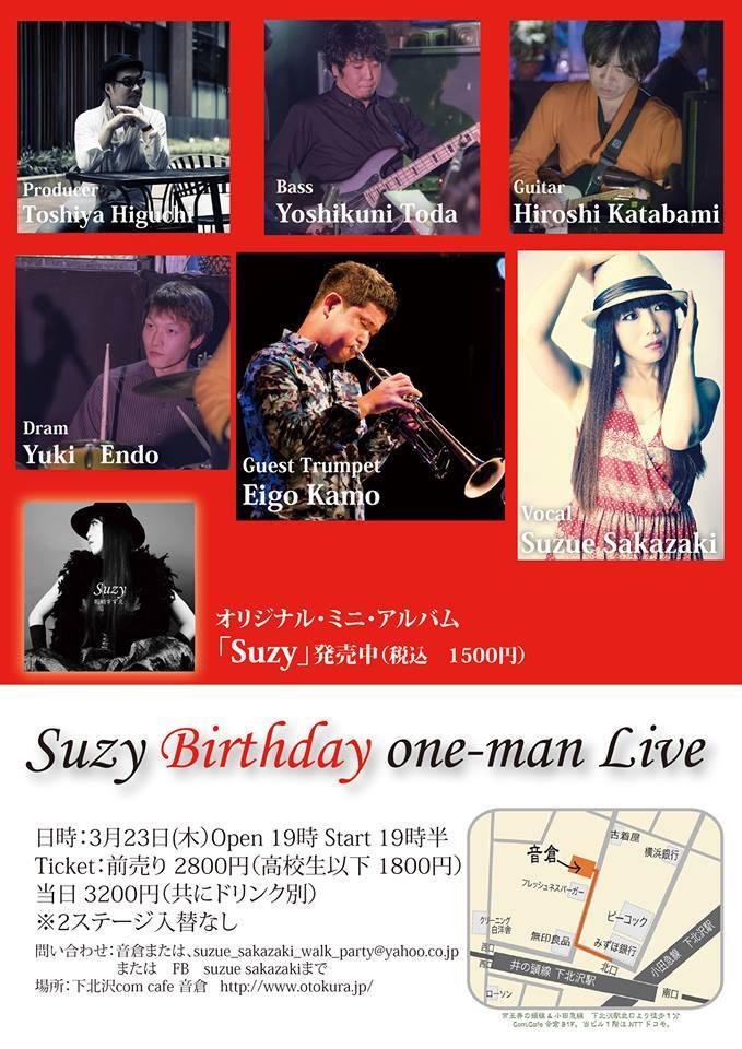 Suzy_concert